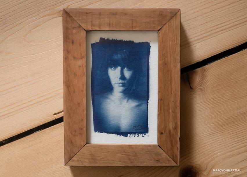 cyanotypes - marc von martial . photography . fine artsmarc von ...