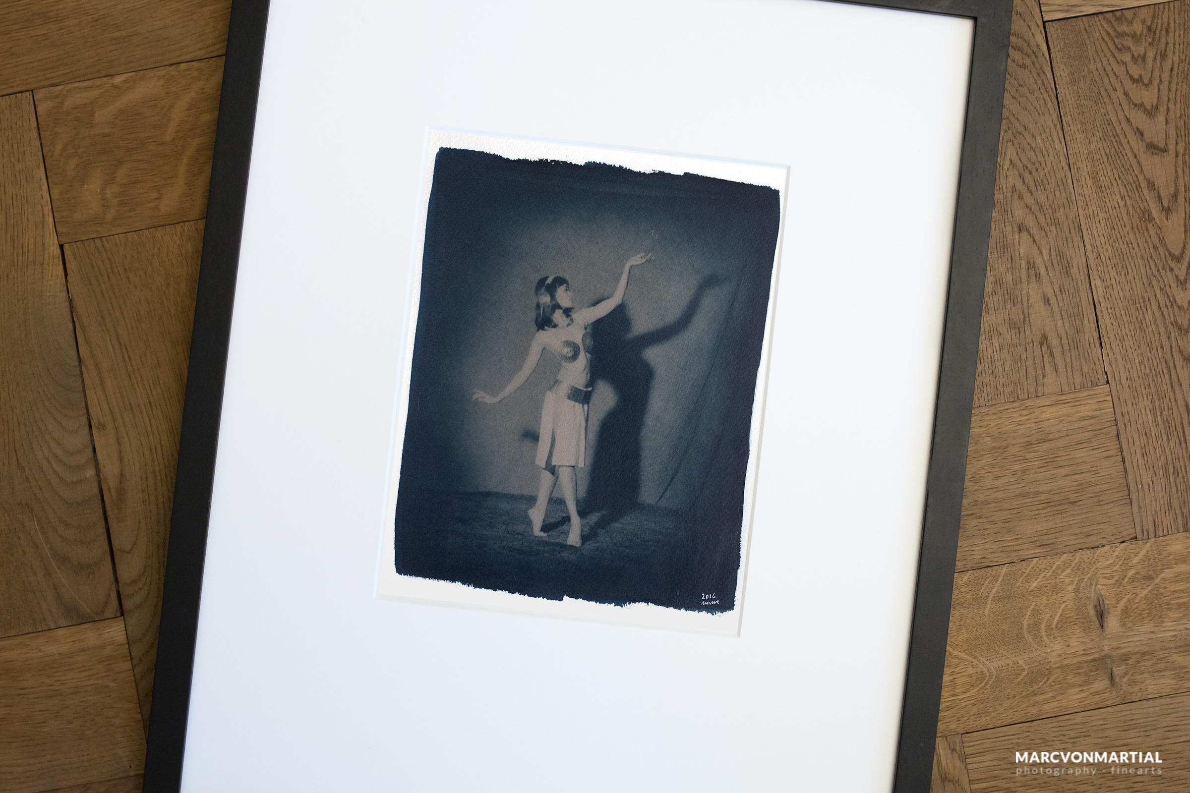 dance of the pony, cyanotype